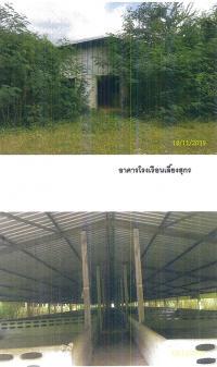 https://www.ohoproperty.com/416/ธนาคารกรุงไทย/ขายที่ดินพร้อมสิ่งปลูกสร้าง/เตาปูน/โพธาราม/ราชบุรี/