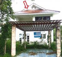 https://www.ohoproperty.com/2612/ธนาคารกรุงไทย/ขายบ้านเดี่ยว/หนองขนาน/เมืองเพชรบุรี/เพชรบุรี/