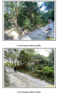 https://www.ohoproperty.com/1401/ธนาคารกรุงไทย/ขายที่ดินเปล่า/หน้าเมือง/เกาะสมุย/สุราษฎร์ธานี/