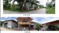 https://www.ohoproperty.com/3340/ธนาคารกรุงไทย/ขายบ้านเดี่ยว/เกาะพะงัน/เกาะพะงัน/สุราษฎร์ธานี/