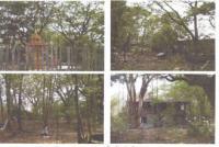https://www.ohoproperty.com/487/ธนาคารกรุงไทย/ขายที่ดินพร้อมสิ่งปลูกสร้าง/พระลับ/เมืองขอนแก่น/ขอนแก่น/