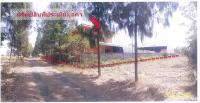 ขายที่ดินพร้อมสิ่งปลูกสร้าง ตำบลกังแอน อำเภอปราสาท สุรินทร์ ขนาด 2-0-0 ของ ธนาคารกรุงไทย