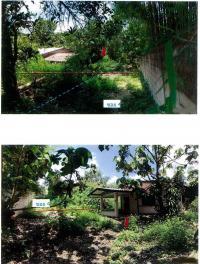 https://www.ohoproperty.com/1449/ธนาคารกรุงไทย/ขายบ้านเดี่ยว/เวียง/ฝาง/เชียงใหม่/