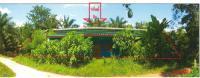 https://www.ohoproperty.com/1937/ธนาคารกรุงไทย/ขายบ้านเดี่ยว/ลำทับ/ลำทับ/กระบี่/