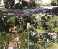 ที่ดินพร้อมสิ่งปลูกสร้างหลุดจำนอง ธ.ธนาคารกรุงไทย ประตูป่า เมืองลำพูน ลำพูน