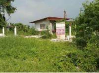 ขายที่ดินพร้อมสิ่งปลูกสร้าง ตำบลคูบางหลวง อำเภอลาดหลุมแก้ว ปทุมธานี ขนาด 1-3-38 ของ ธนาคารกรุงไทย