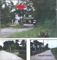 https://www.ohoproperty.com/51888/ธนาคารกรุงไทย/ขายที่ดินพร้อมสิ่งปลูกสร้าง/ศิลา/เมืองขอนแก่น/ขอนแก่น/