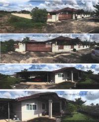 https://www.ohoproperty.com/62622/ธนาคารกรุงไทย/ขายบ้านเดี่ยว/ต้นธงชัย/เมืองลำปาง/ลำปาง/