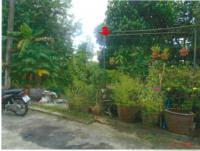 ที่ดินเปล่าหลุดจำนอง ธ.ธนาคารกรุงไทย ตำบลฉลอง อำเภอเมืองภูเก็ต ภูเก็ต