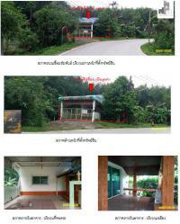 https://www.ohoproperty.com/51623/ธนาคารกรุงไทย/ขายบ้านเดี่ยว/คลองแห/หาดใหญ่/สงขลา/