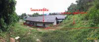 https://www.ohoproperty.com/50499/ธนาคารกรุงไทย/ขายที่ดินเปล่า/กะทู้/กะทู้/ภูเก็ต/