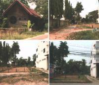 https://www.ohoproperty.com/54495/ธนาคารกรุงไทย/ขายที่ดินพร้อมสิ่งปลูกสร้าง/ในเมือง/เมืองพิษณุโลก/พิษณุโลก/