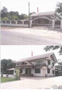https://www.ohoproperty.com/63940/ธนาคารกรุงไทย/ขายที่ดินพร้อมสิ่งปลูกสร้าง/พังขว้าง/เมืองสกลนคร/สกลนคร/