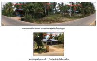 https://www.ohoproperty.com/65621/ธนาคารกรุงไทย/ขายที่ดินพร้อมสิ่งปลูกสร้าง/ตำบลลำไพล/อำเภอเทพา/สงขลา/