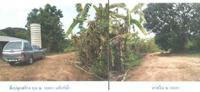 ที่ดินพร้อมสิ่งปลูกสร้างหลุดจำนอง ธ.ธนาคารกรุงไทย อ่างหิน ปากท่อ ราชบุรี