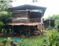 https://www.ohoproperty.com/73683/ธนาคารกรุงไทย/ขายที่ดินพร้อมสิ่งปลูกสร้าง/โซง/น้ำยืน/อุบลราชธานี/