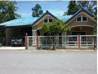 https://www.ohoproperty.com/73793/ธนาคารกรุงไทย/ขายบ้านเดี่ยว/บางม่วง/ตะกั่วป่า/พังงา/