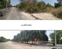 https://www.ohoproperty.com/75341/ธนาคารกรุงไทย/ขายที่ดินเปล่า/ตำบลดอนยายหอม/อำเภอเมืองนครปฐม/นครปฐม/