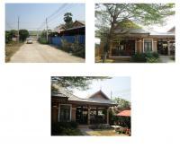 https://www.ohoproperty.com/81453/ธนาคารกรุงไทย/ขายบ้านเดี่ยว/หนองปรือ/บางละมุง/ชลบุรี/
