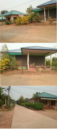 https://www.ohoproperty.com/83500/ธนาคารกรุงไทย/ขายที่ดินพร้อมสิ่งปลูกสร้าง/นิคมทุ่งโพธิ์ทะเล/เมืองกำแพงเพชร/กำแพงเพชร/