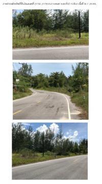 https://www.ohoproperty.com/132913/ธนาคารกรุงไทย/ขายที่ดินเปล่า/เกาะคอเขา/ตะกั่วป่า/พังงา/