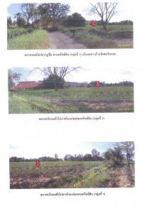 https://www.ohoproperty.com/133672/ธนาคารกรุงไทย/ขายที่ดินพร้อมสิ่งปลูกสร้าง/บ้านเพชร/บำเหน็จณรงค์/ชัยภูมิ/