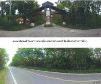 https://www.ohoproperty.com/1182/ธนาคารกรุงไทย/ขายที่ดินพร้อมสิ่งปลูกสร้าง/มวกเหล็ก/มวกเหล็ก/สระบุรี/