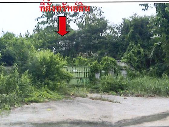 49/2 หมู่ 6 ซอยบ้านหนอนนาง 26 ถนนสายพนัสนิคม-หนองเสม็ด (3284) หมอนนาง พนัสนิคม ชลบุรี