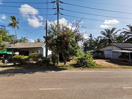 22 หมู่ 4 ถนนสายบ้านคลองหมาก-บ้านโล๊ะใหญ่ เกาะลันตาน้อย เกาะลันตา กระบี่