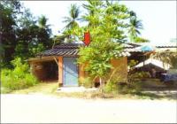 https://www.ohoproperty.com/128324/ธนาคารอาคารสงเคราะห์/ขายบ้านเดี่ยว/สะบ้าย้อย/สะบ้าย้อย/สงขลา/