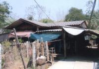 https://www.ohoproperty.com/121546/ธนาคารอาคารสงเคราะห์/ขายบ้านเดี่ยว/กล้วยแพะ/เมืองลำปาง/ลำปาง/