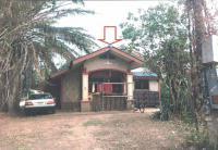 https://www.ohoproperty.com/133128/ธนาคารอาคารสงเคราะห์/ขายบ้านเดี่ยว/หนองกอมเกาะ/เมืองหนองคาย/หนองคาย/
