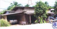 https://www.ohoproperty.com/121454/ธนาคารอาคารสงเคราะห์/ขายบ้านเดี่ยว/ซากอ/ศรีสาคร/นราธิวาส/