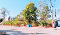 https://www.ohoproperty.com/102349/ธนาคารกสิกรไทย/ขายที่ดินว่างเปล่า/หนองบอนแดง/บ้านบึง/ชลบุรี/