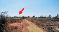 https://www.ohoproperty.com/134242/ธนาคารกสิกรไทย/ขายที่ดินว่างเปล่า/เมืองเพีย/กุดจับ/อุดรธานี/