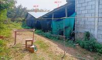 https://www.ohoproperty.com/104916/ธนาคารกสิกรไทย/ขายบ้านเดี่ยว/ดอนมูล/สูงเม่น/แพร่/