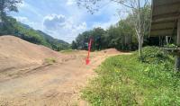 บ้านเดี่ยวหลุดจำนอง ธ.ธนาคารกสิกรไทย บ้านยาง คีรีรัฐนิคม สุราษฎร์ธานี