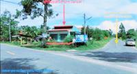 https://www.ohoproperty.com/105802/ธนาคารกสิกรไทย/ขายบ้านเดี่ยว/รัตภูมิ/ควนเนียง/สงขลา/