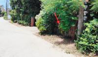 https://www.ohoproperty.com/106304/ธนาคารกสิกรไทย/ขายบ้านเดี่ยว/ริมกก/เมืองเชียงราย/เชียงราย/
