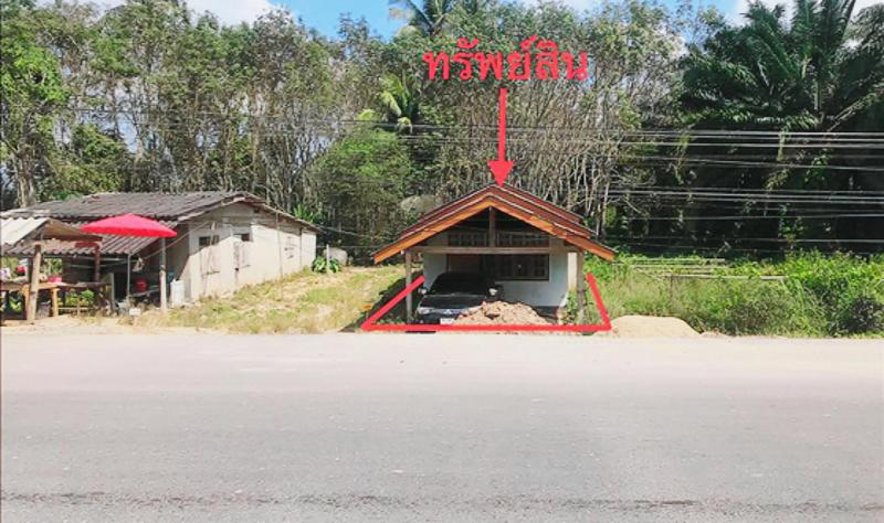ไทรทอง ชัยบุรี สุราษฎร์ธานี