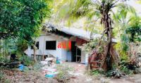https://www.ohoproperty.com/134258/ธนาคารกสิกรไทย/ขายบ้านเดี่ยว/บ้านตาด/เมืองอุดรธานี/อุดรธานี/