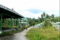 https://www.ohoproperty.com/18157/ธนาคารไทยพาณิชย์/ขายโรงงาน/เกาะพะงัน/เกาะพะงัน/สุราษฎร์ธานี/