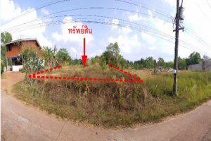 ซอยไม่มีชื่อ ถนนศาลาด่าน-สังกาฮู้(4245) กม.17+350 เกาะลันตาใหญ่ เกาะลันตา กระบี่