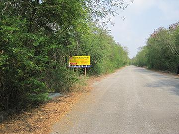 โครงการบางปูคันทรีคลับ (ซ.C 26) ถนนสุขุมวิท ซอยเทศบาลบางปู 77 (ถนนพัฒนานิคมอุตสาหกรรมบางปู) บางปู เมืองสมุทรปราการ (เมือง) จังหวัดสมุทรปราการ