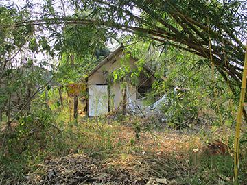 ถนนบ้านเก่า-ปราสาทเมืองสิงห์ ลุ่มสุ่ม ไทรโยค จังหวัดกาญจนบุรี