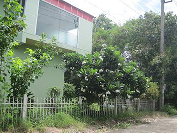 บ้านเลขที่ 42/824 สามวาตะวันออก เขตมีนบุรี (เมือง) กรุงเทพมหานคร