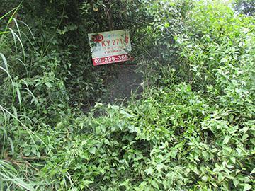 ถนนสถิตตย์นิมานกาล วารินชำราบ วารินชำราบ จังหวัดอุบลราชธานี