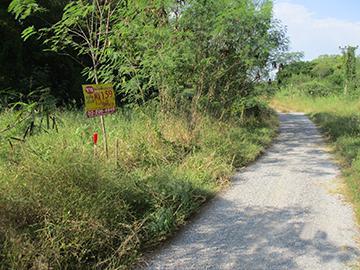 โครงการบางไทรการ์เด้น ถนนสายปทุมธานี-สามโคก-เสนา บางไทร บางไทร(เสนาน้อย) จังหวัดพระนครศรีอยุธยา