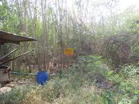 ที่ดินเปล่าหลุดจำนอง ธ.ธนาคารกรุงศรีอยุธยา ปึกเตียน ท่ายาง จังหวัดเพชรบุรี