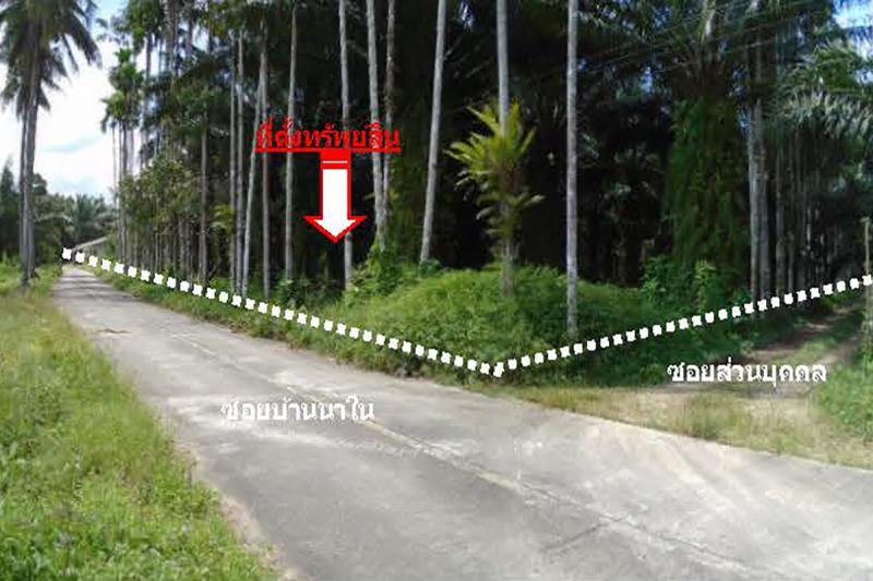 5/2 หมู่ 5 ซอยบ้านนาใน ถนนสายกะเปอร์-บ้านนา เชี่ยวเหลียง กะเปอร์ ระนอง